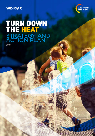 Turn Down the Heat: Strategy and action plan